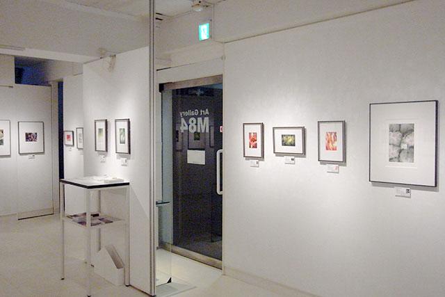 Art Gallery M84