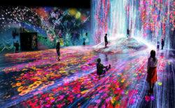 森ビル デジタルアート ミュージアム:エプソン チームラボボーダレス