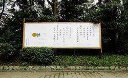 【Art News Liminality】明治神宮の静かな100年祭―「神宮の杜芸術祝祭」と宝物の間から(その2)