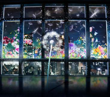W'UP! ★ Breath/Bless Project『Dandelion』東京タワー
