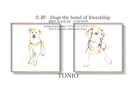 W'UP! ★ 6月4日〜 TONIO 『犬-絆-』 Dogs-The bond of friendship デザインフェスタギャラリー