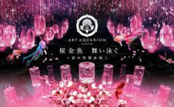 W'UP ★ 春の特別企画「桜金魚 舞い泳ぐ」 アートアクアリウム美術館