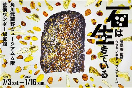 W'UP! ★7月3日~2022年1月16日 「石は生きている」 角川武蔵野ミュージアム4F 荒俣ワンダー秘宝館