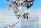 W'UP! ★8月25日〜9月5日 オープン·ウォーター〜水(*)開く〜 齋藤彰英個展「東京礫層:Tokyo Gravel」 iwao gallery