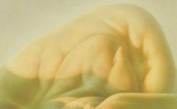 W'UP! ★ 10月2日~11月21日 「寺田小太郎 いのちの記録 ーコレクションよ、永遠に」展【後編】「継承」 多摩美術大学美術館
