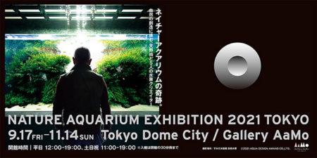 W'UP★ 9月17日~11月14日 NATURE AQUARIUM EXHIBITION 2021 TOKYO Gallery AaMo(ギャラリー アーモ)