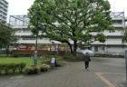 【The Evangelist of Contemporary Art】東京ビエンナーレは、果たして東京ビエンナーレだったのか?(1)