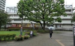 【The Evangelist of Contemporary Art】東京ビエンナーレは、果たして東京ビエンナーレだったのか?(2)